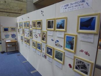 神戸海洋博物館1.jpg